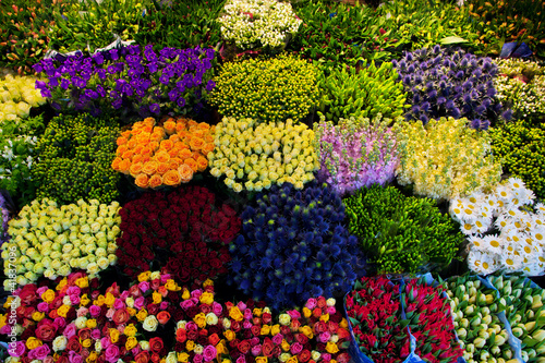 Colorful flowers in a florist's. Gardening