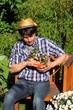 Gärtner in Morgensonne pflanzt Stiefmütterchen