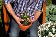 Gärtner pflanzt Blumen in Tontopf Morgensonne