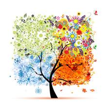 Vier Jahreszeiten - Frühling, Sommer, Herbst, Winter. Art tree