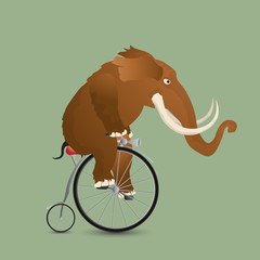 Vector illustration of a Mammuth driving a vintage bicycle