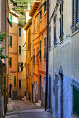 Colorful narrow street in the Cinque Terre, Italy