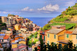 View over the Cinque Terre village of Manarola, Italy