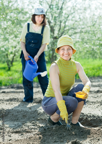 women sows seeds  at field