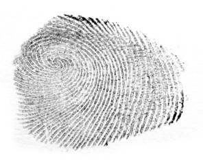 Fingerprint isolated on white