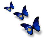 Three Kosovo flag butterflies, isolated on white poster