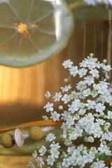 Biolimonade mit Holunder und Zitrone