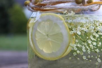 Zitronenlimonade Bio wellness selbst hergestellt