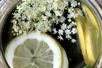 Biolimonade wird in Garten selbst hergestellt
