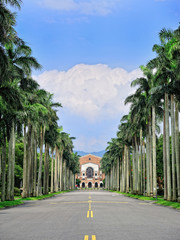 National Taiwan University - the Royal Palm Blvd.