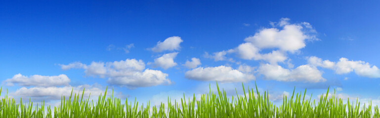 green grass and blue sky panorama with clouds