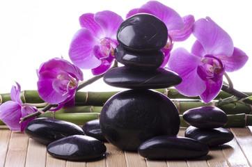 orchidea con pietre nere e bambù 2