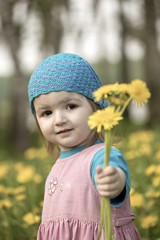 The little girl gives a bouquet of dandelions
