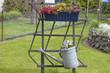 Gartendekoration in einem Bauerngarten