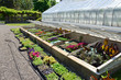 Garden Frames and greenhouse