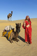 Woman in sari with her camels, Thar Desert, Rajasthan, India.