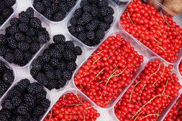 Fruit market in Vienna - blackberry and red currant