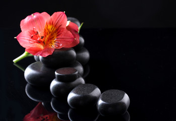 Spa stones and red flower on black background
