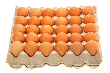 Tray Of Fresh Eggs In A Carton