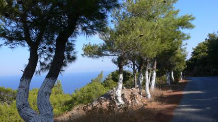 Strasse in Griechenland