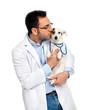 Veterinario con Jack Russell