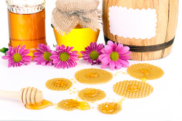 Honeycomb and honey isolated on white
