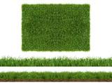 Fototapety rasen gras wiese panorama - freigestellt auf weißem hintergrund
