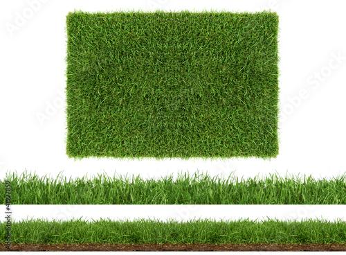 rasen gras wiese panorama - freigestellt auf weißem hintergrund