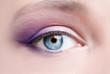 violet makeup of a female eye