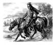 Knight 14th century - Chevalier