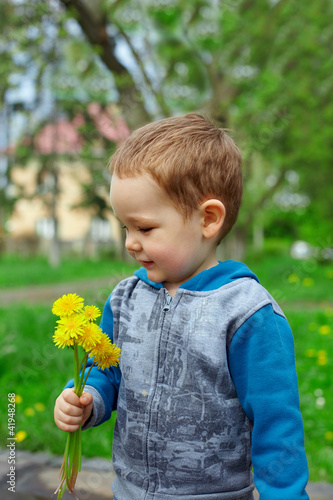 cute baby boy holding a bunch of dandelion flowers