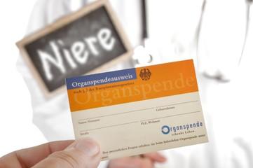 Organspende Organspenderausweis Niere