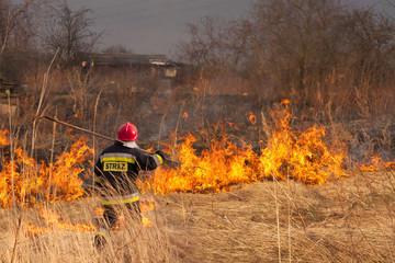 Wypalanie traw. Pożar.
