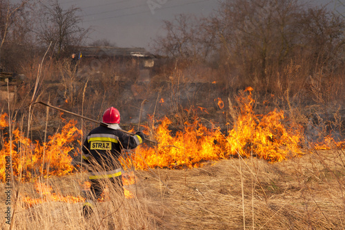 Wypalanie traw. Pożar. - 41954068