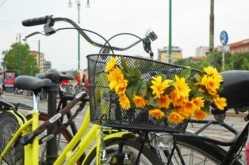 Cestino di bici con fiori gialli a Milano, Italia