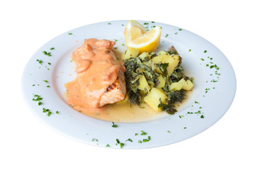 salmon dish isolated