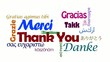 Merci Thank you Gracias Danke nuage de tags vidéo