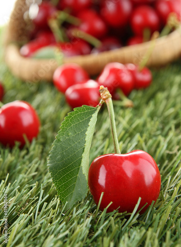 heap of cherry and leaf
