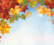 Vector of autumnal leaves on blue sky background.
