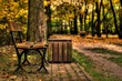 Autumn in the park in Belchatow. Poland