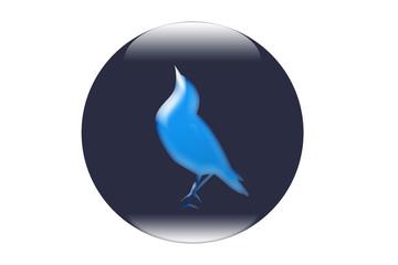 Boton ave