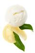 Kugel Zitroneneis mit Zitrone und Blätter von oben