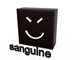 Square mimics the sanguine on a white background poster