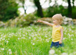Baby girl on dandelions field pointing on copy space