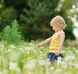 Baby girl playing on dandelions field