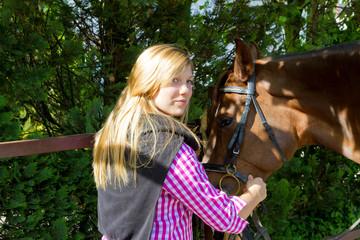 Pferdehalfter anlegen