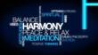 Harmony positve thinking attitude meditation tag cloud video
