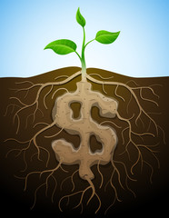 Roots and tuber in form of dollar symbol sprout. Vector image