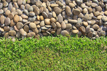 Fresh green grass on concrete background