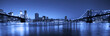 View of Manhattan and Brooklyn bridges and skyline at night - 42013041